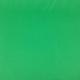 Maglina Verde